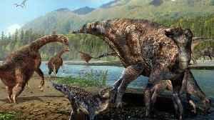 Volcanoes Didn't Kill Dinosaurs, Study Says [Video]