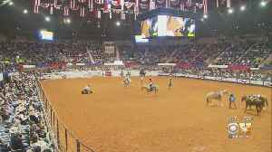 Texas Treasures: Fort Worth Stock Show [Video]