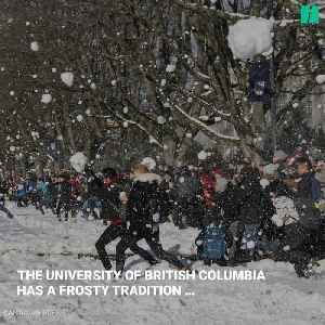 Inclement Weather Is No Issue For UBC's Annual Snowball Fight [Video]