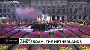 Amsterdam marks National Tulip Day with free flowers [Video]