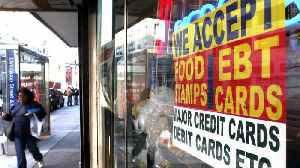 14 States Sue Trump Administration Over Planned Food Stamp Cuts [Video]
