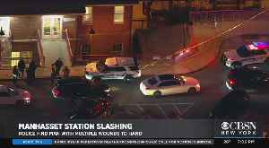 2 In Custody After Slashing At Manhasset LIRR Station [Video]