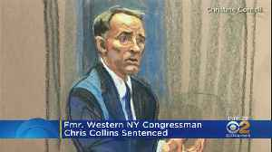 News video: Former Western NY Congressman Chris Collins Sentenced
