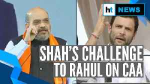 Amit Shah challenges Rahul Gandhi over CAA: 'Prahlad Joshi ready for debate' [Video]