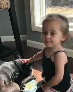 Little Girl Adorably Kisses Her Dog and Gets Kissed Back [Video]
