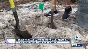 Students plant native trees in Lake Worth Beach to mark Arbor Day [Video]