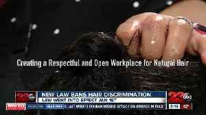 New law bans discrimination against natural hairstyles in the workplace and schools [Video]