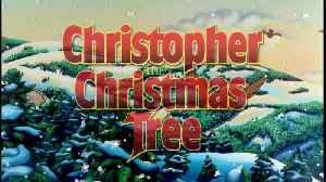 Christopher The Christmas Tree Movie [Video]