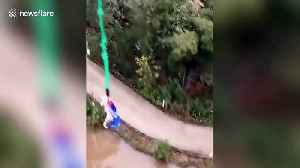 Outrage after Chinese theme park forces pig to bungee jump [Video]