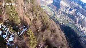 French daredevil wingsuits through dense forest in the French Alps [Video]