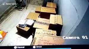 CCTV footage captures thieves stealing more than $20,000 of cigarette cartons in northwest India [Video]