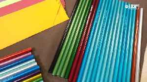 Company Manufactures Eco-Friendly Straws to Protect Marine Life [Video]