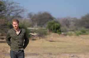 Prince Harry had 'no other option but to step back' from the Royal Family [Video]