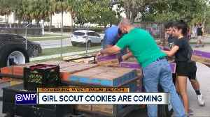 Girl Scout cookies are coming [Video]