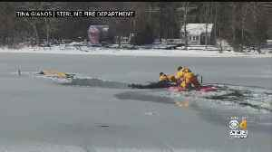 Man And Dog Rescued After Falling Through Ice Into Sterling Pond [Video]
