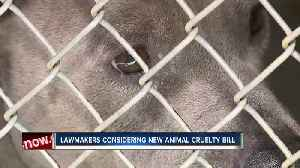 Lawmakers considering new animal cruelty bill [Video]