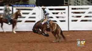 'Cowboys Of Color' Rodeo Happening In Fort Worth Monday Night [Video]