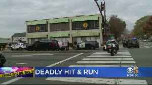 Police Investigate Fatal Hit-And-Run Of Pedestrian On University Avenue [Video]