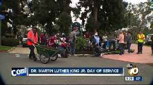 Volunteers clean Balboa Park for MLK Day of Service [Video]