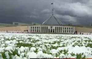 Australia's capital hit by destructive hailstorm [Video]