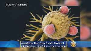 Accidental Discovery Raises Prospect Of 'One-Size-Fits-All' Cancer Treatment [Video]