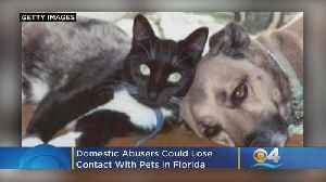 Domestic Abusers Could Lose Contact With Pets In Florida [Video]