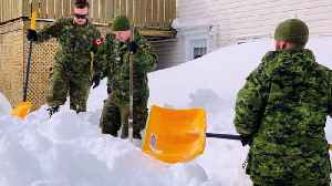Canadian Armed Forces Help Dig Out Snowbound Newfoundland Residents [Video]