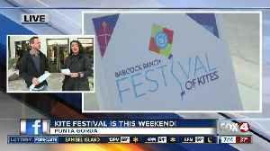 Babcock Ranch brings Festival of Kites to Charlotte County [Video]