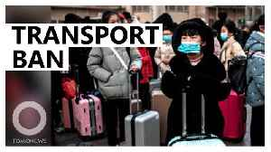 News video: Wuhan suspends public transport amid virus outbreak