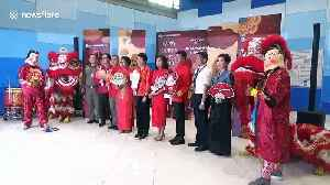 News video: Chinese tourists welcomed at Bangkok airport for New Year celebration