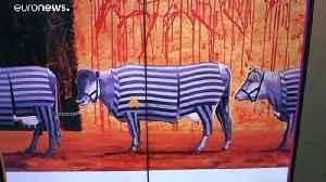 Polish MEP sparks outrage over Nazi prison uniform cattle tweet | #TheCube [Video]