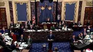 Protester interrupts Trump impeachment trial [Video]