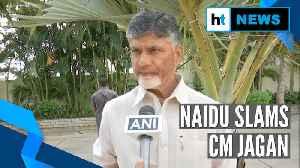 'People want development, not politics': Chandrababu Naidu slams 3-capital plan [Video]