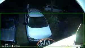 VIDEO: Davis Sex Assault Suspect Surveillance Footage [Video]