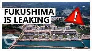 Four leaks found in Japan's Fukushima Nuclear Plant [Video]