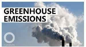 Rise in greenhouse gas emissions linked to China, India: Study [Video]
