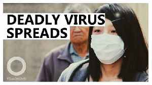 Wuhan virus spreads amid Lunar New Years celebrations [Video]