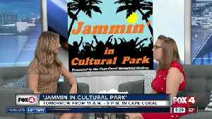 Jammin' in Cultural Park Cape Coral [Video]