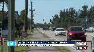 Woman dies in hit and run crash [Video]