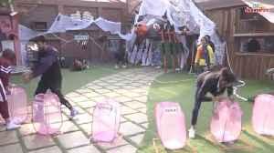 Bigg Boss 13: Shehnaaz Gill Sides With Asim-Rashami, Pushes Sidharth Shukla During A Task [Video]