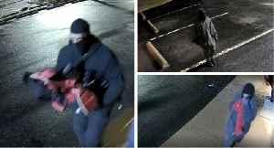 Photos Show Suspects Who Stole Guns from Virginia Gun Shop, Police Say [Video]
