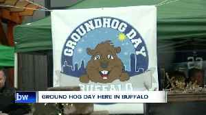Skip Phil, the Buffalo Groundhog says 'six more weeks of winter' [Video]