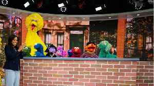 Five Tweets From Parents About 'Sesame Street' [Video]