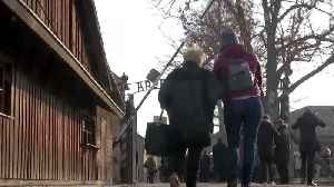 Sorrow and triumph, an Auschwitz survivor's journey back to a former hell [Video]