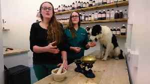 Twins have opened a vet surgery which treats pets with herbal remedies [Video]