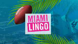 Guide To Miami Lingo While In Town For Super Bowl 54 [Video]