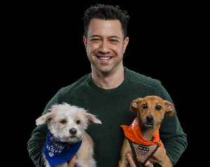Dan Schachner Chats About Animal Planet's Adorable Annual Event, 'Puppy Bowl XVI' [Video]