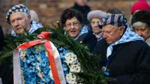 Survivors mark 75 years since Auschwitz liberation [Video]