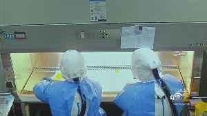 The Battle To Contain Coronavirus [Video]