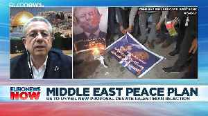 Palestinian MP on Trump's Middle East peace plan: 'It's an Israeli plan in an American envelope'